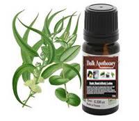 where to buy eucalyptus oil